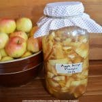 homemade apple cider vinegar in progress with a bowl of apples