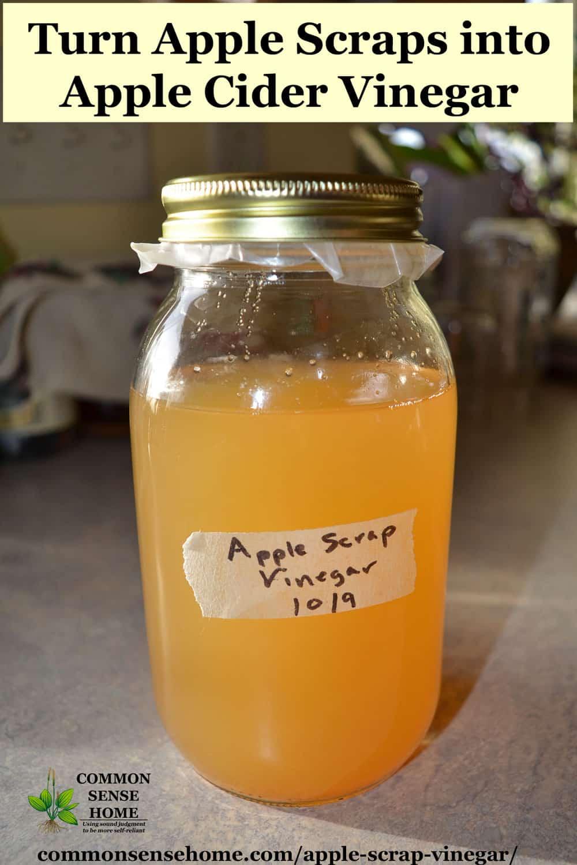 homemade apple cider vinegar ACV