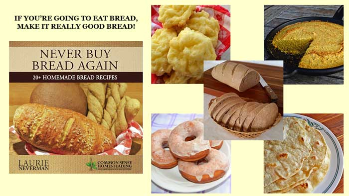 This book will help you: Save money, Avoid the Preservatives and Additives in Commercial Bread, and Enjoy the amazing aroma of fresh baked bread!