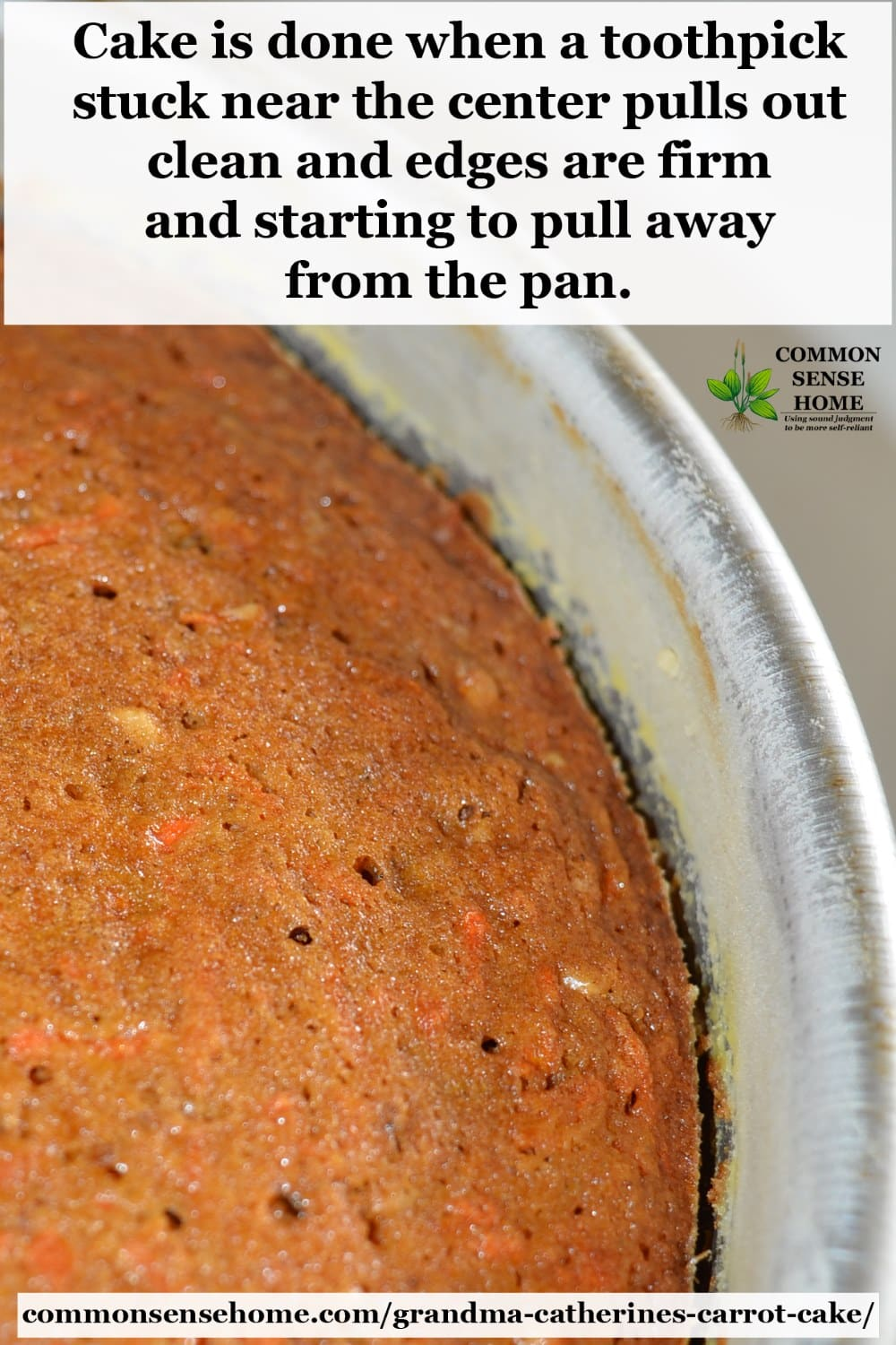 "closeup of freshly baked carrot cake in pan - text overlay ""Cake is done when a toothpick stuck near the center pulls out clean and the edges are firm and starting to pull away from the pan."""