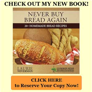 Bread Book Kickstarter