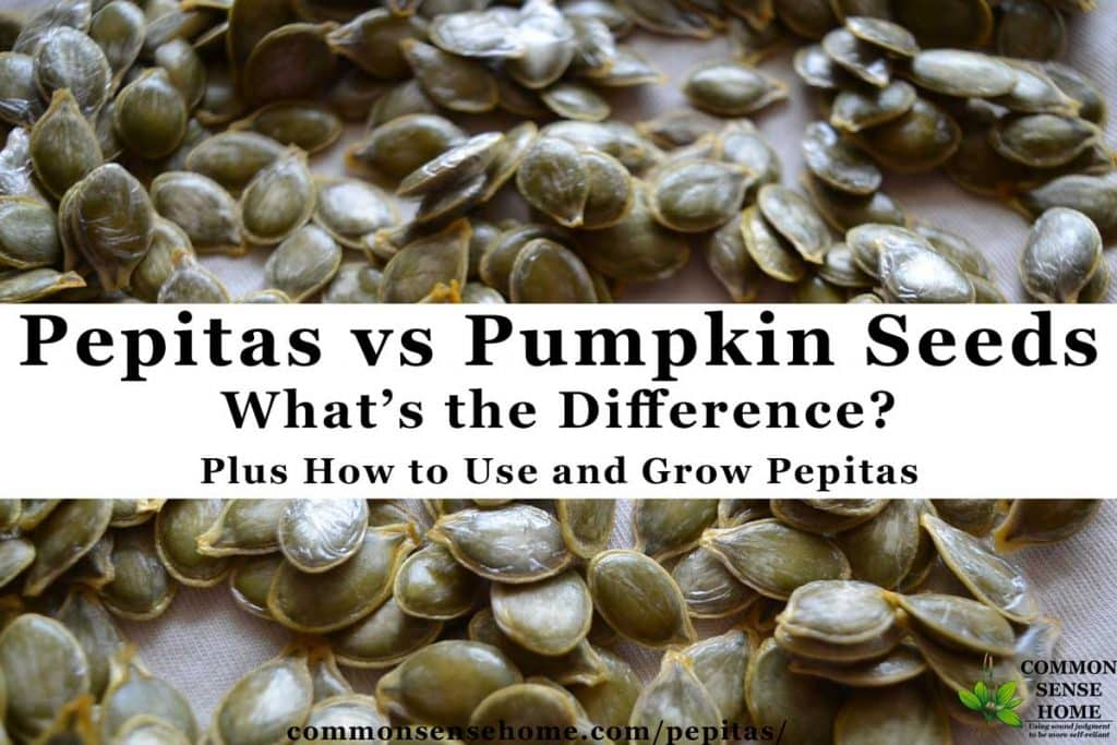 Pepitas vs Pumpkin Seeds - Plus How to Use and Grow Pepitas