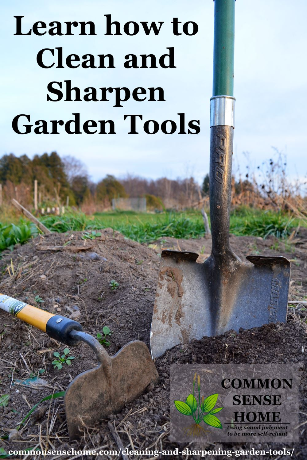 Tools last longer when cleaned and sharpened, plus a well sharpened edge makes gardening easier - learn how to maintain your tools in a step-by-step process.