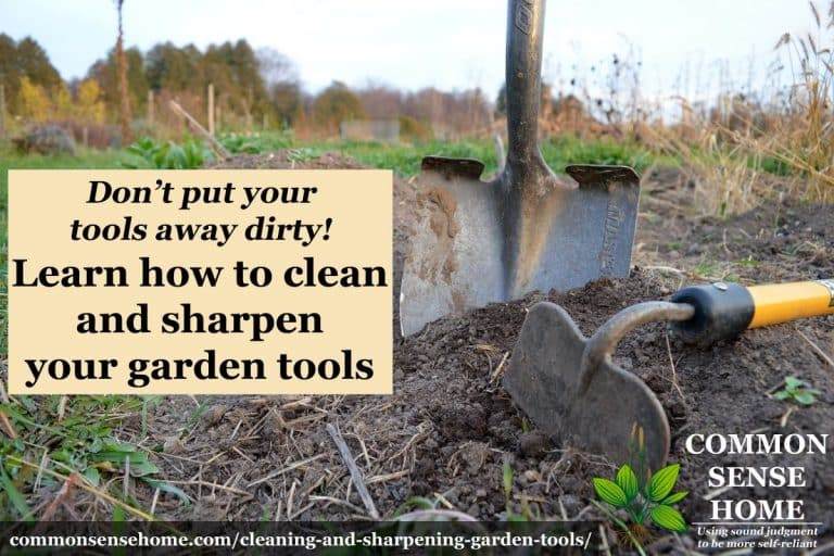 Cleaning and Sharpening Garden Tools