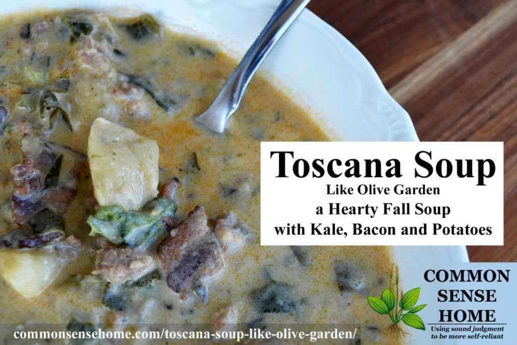 toscana soup close-up