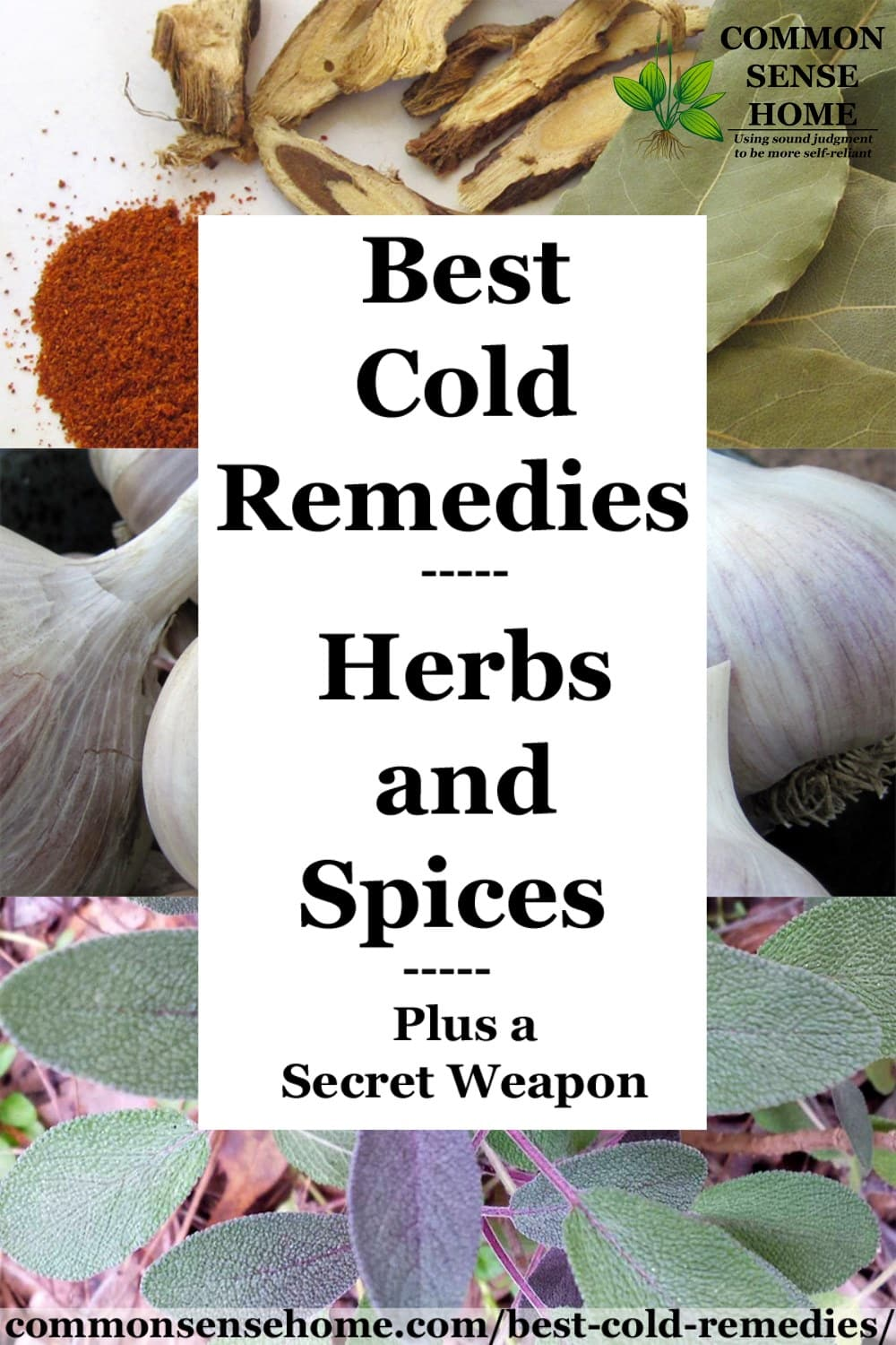 cold remedy herbs and spices