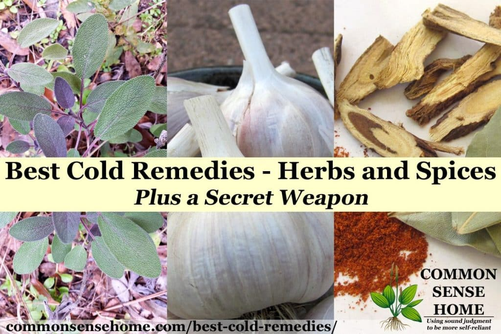 Best Cold Remedies - Herbs and Spices - Plus a Secret Weapon