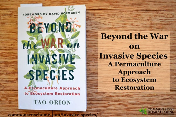 Beyond the War on Invasive Species – A Permaculture Approach to Ecosystem Restoration