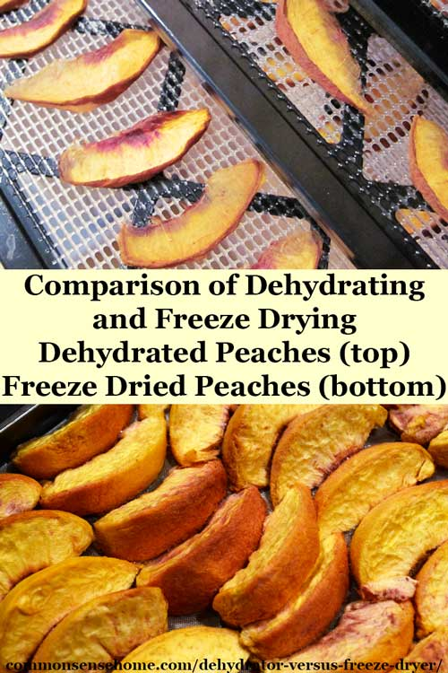 Dehydrator Versus Freeze Dryer - Both dry food for storage, but we'll discuss how they do it and the difference between freeze dried and dehydrated foods.