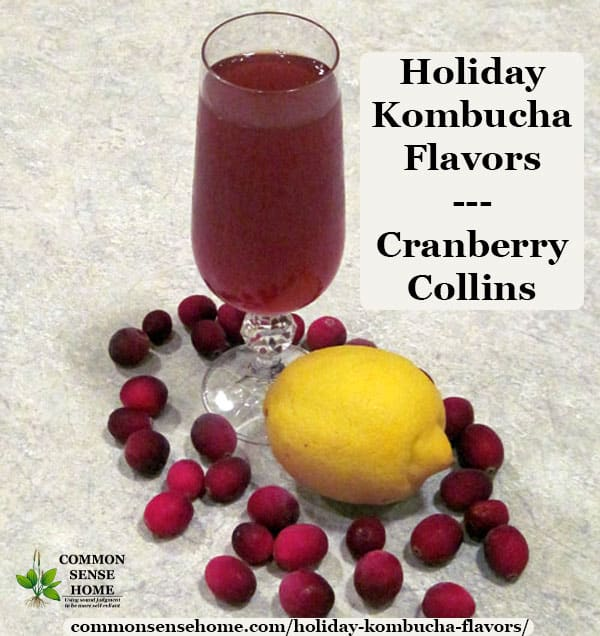 Kombucha holiday flavor - cranberry collins