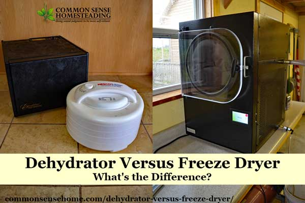 Dehydrator Versus Freeze Dryer – What's the Difference?