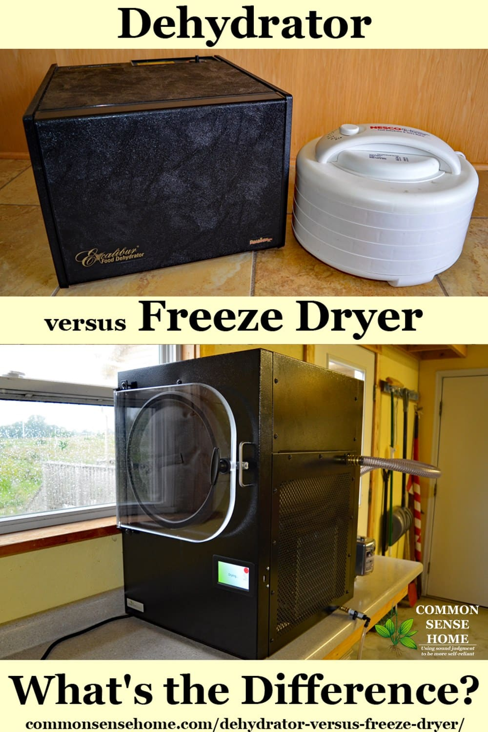 dehydrator versus freeze dryer