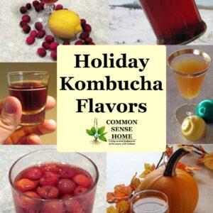 Holiday Kombucha Flavors