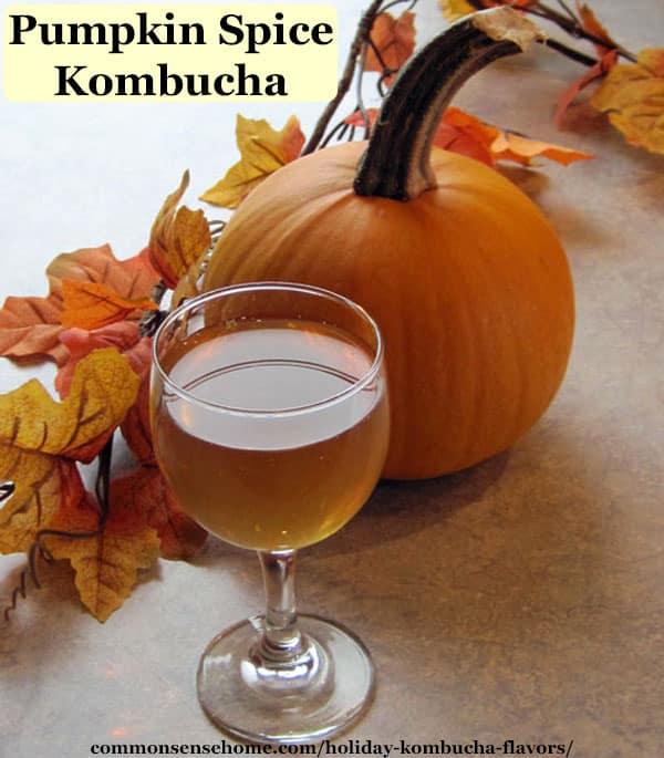 Holiday kombucha flavors - pumpkin spice