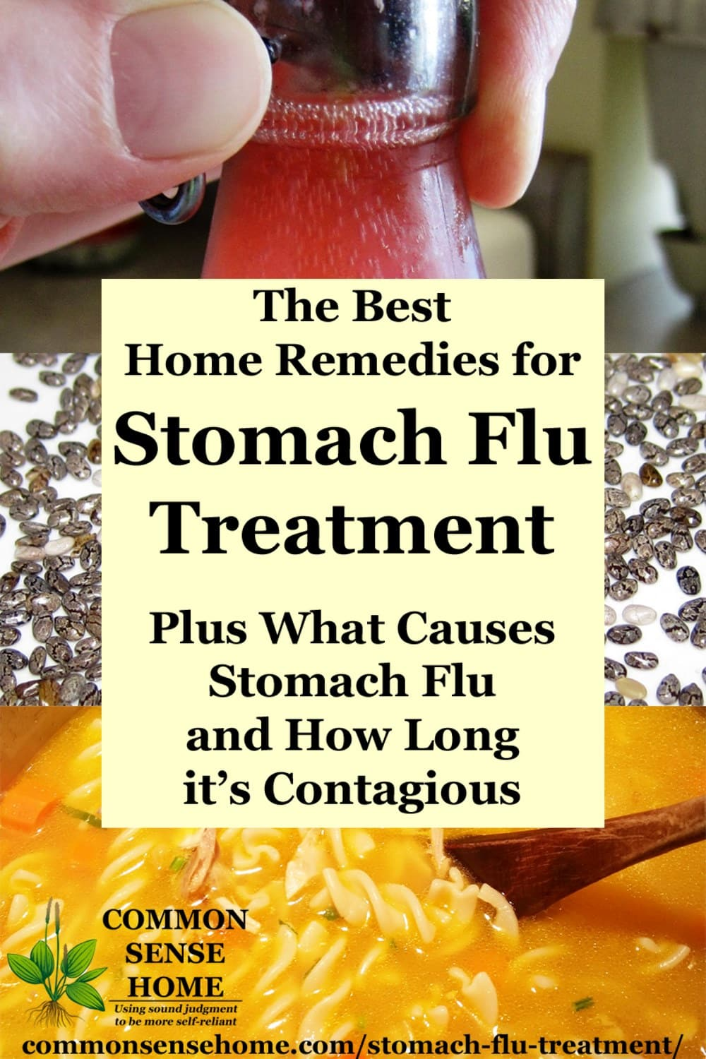 stomach flu treatments collage