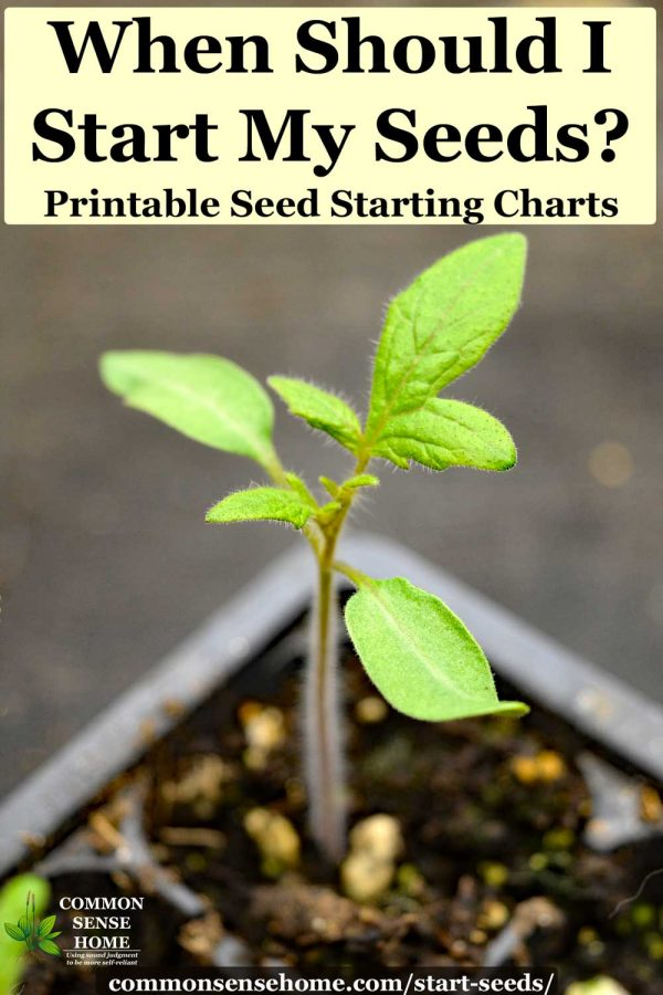 "tomato seedling - text"" When should I start my seeds? Printable Seed Starting Charts"""