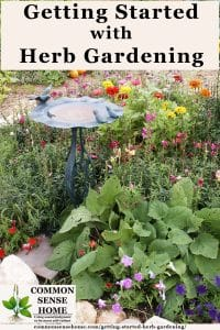 Herb gardening is a wonderful addition to any home or backyard. Learn the basics of adding herbs to your garden for food, medicine and just pure enjoyment.