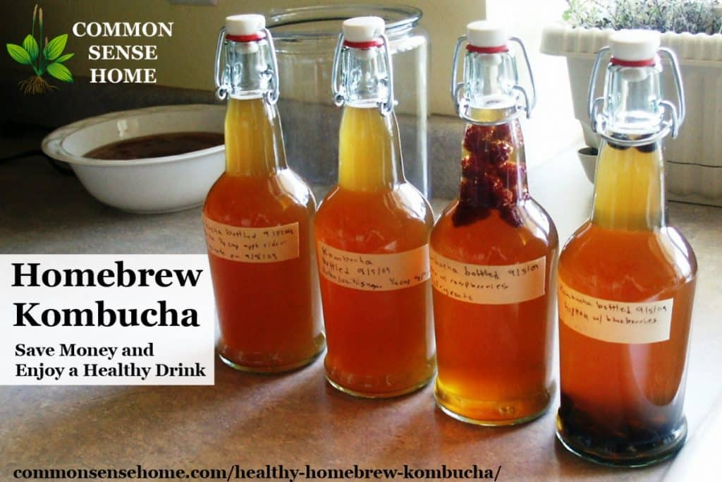 My first experience with homebrew kombucha - step by step kombucha brewing instructions, plus a quick explanation of some kombucha health benefits.