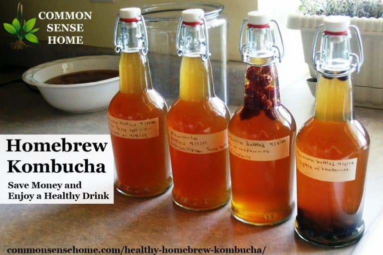 How to Homebrew Kombucha – Save Money and Enjoy a Healthy Drink