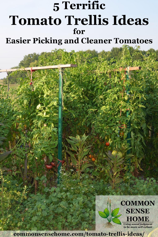 Marvelous Tomato Trellis Ideas Part - 2: Top-bar Tomato Trellis