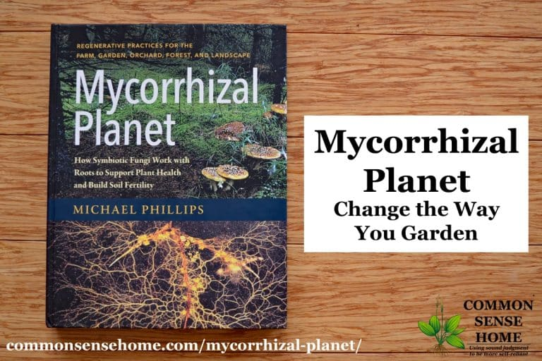 Mycorrhizal Planet – Nurturing Fungi to to Build Soil Fertility and Support Plant Health