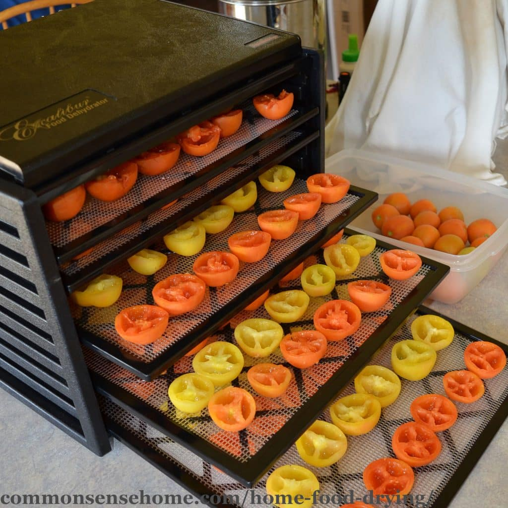 Home food drying tomatoes in an Excalibur dehydrator