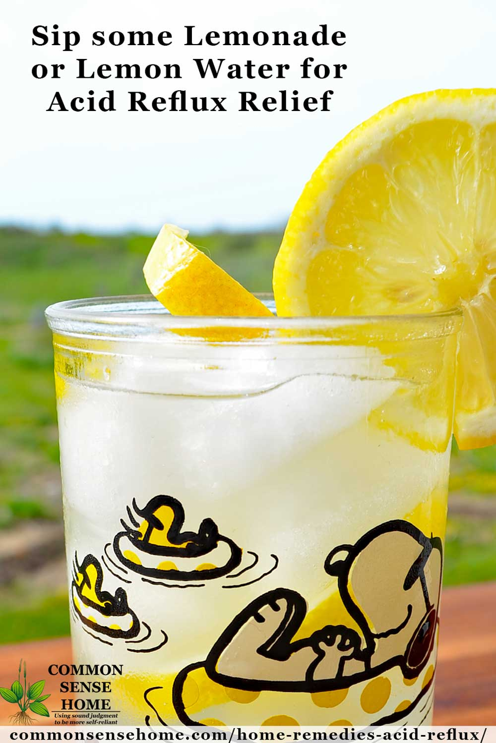 Glass of lemonade for acid reflux treatment