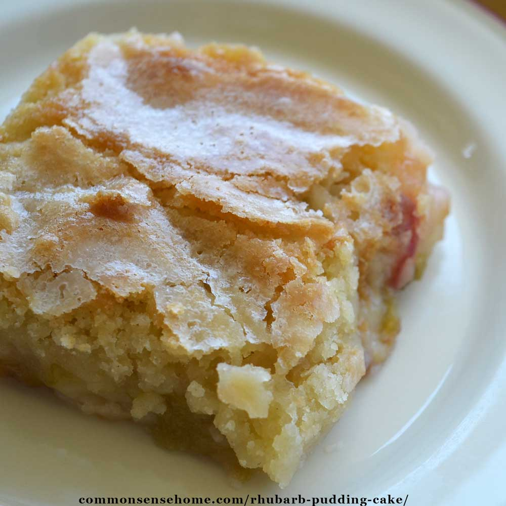 Rhubarb Pudding Cake Plus 9 More Yummy Rhubarb Recipes