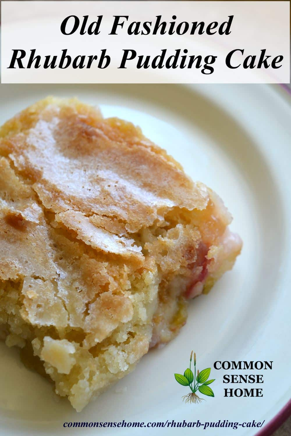 old fashioned rhubarb pudding cake on a white plate