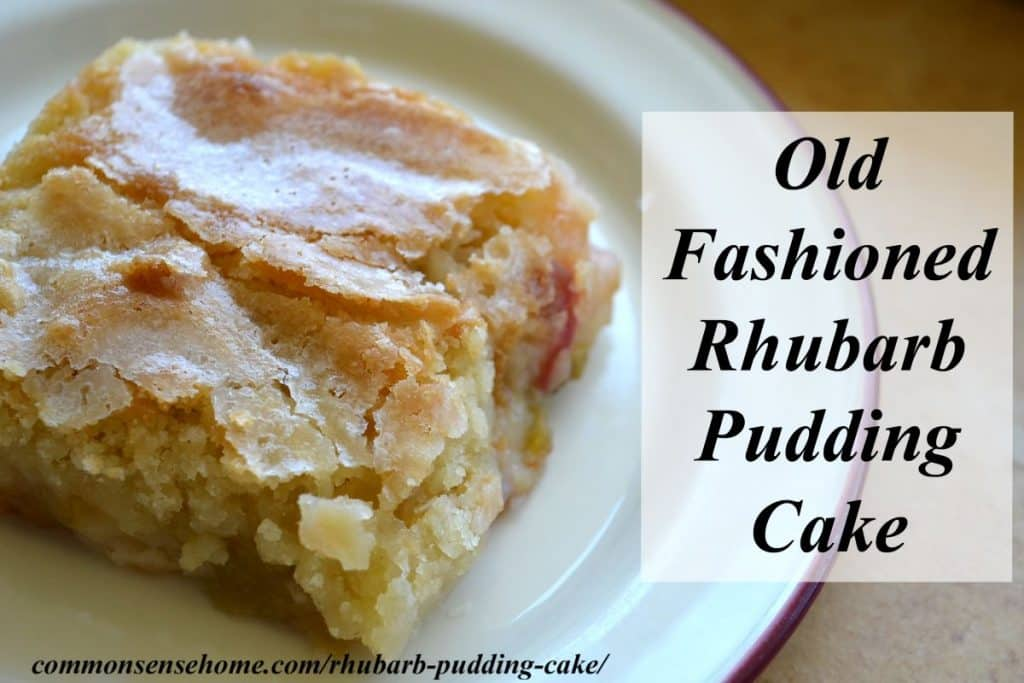 old fashioned rhubarb pudding cake on white plate