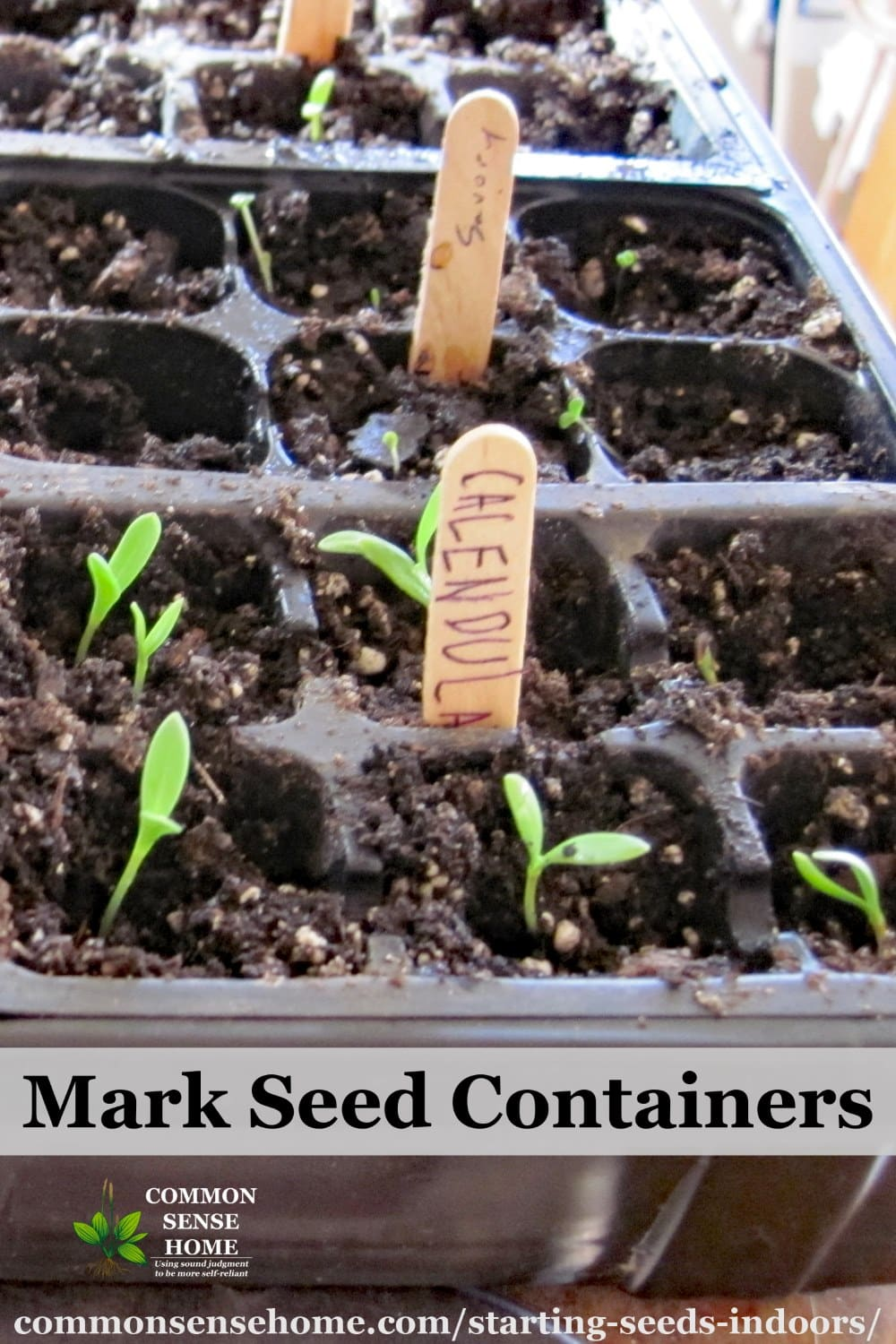 seed starting markers