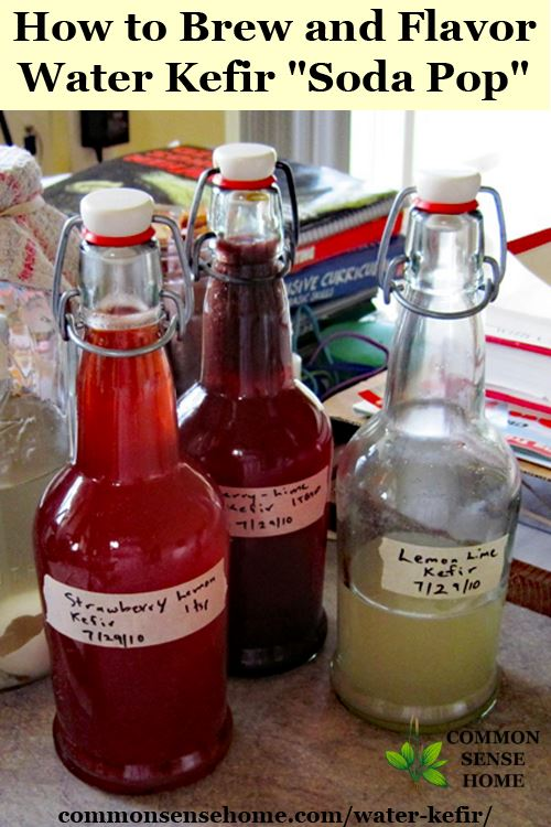 Water kefir bottles