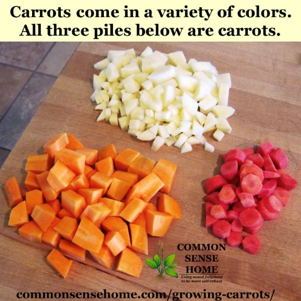 Chopped carrots in three different colors - white, red and orange, sitting on cutting board