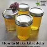 lilac jelly jars