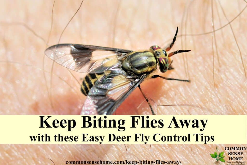 "deer fly on skin with text overlay ""keep biting flies away"""