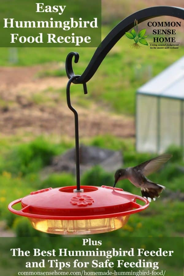 homemade hummingbird food in feeder with hummingbird