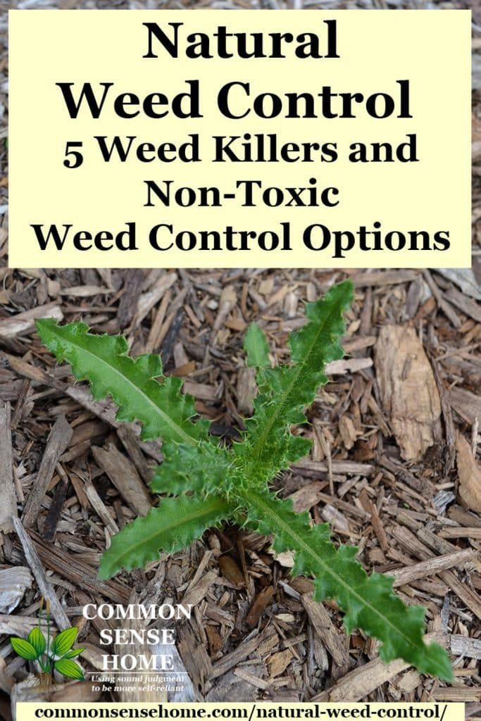 Natural Weed Control - Weed Killers and Non-Toxic Weed Control Options