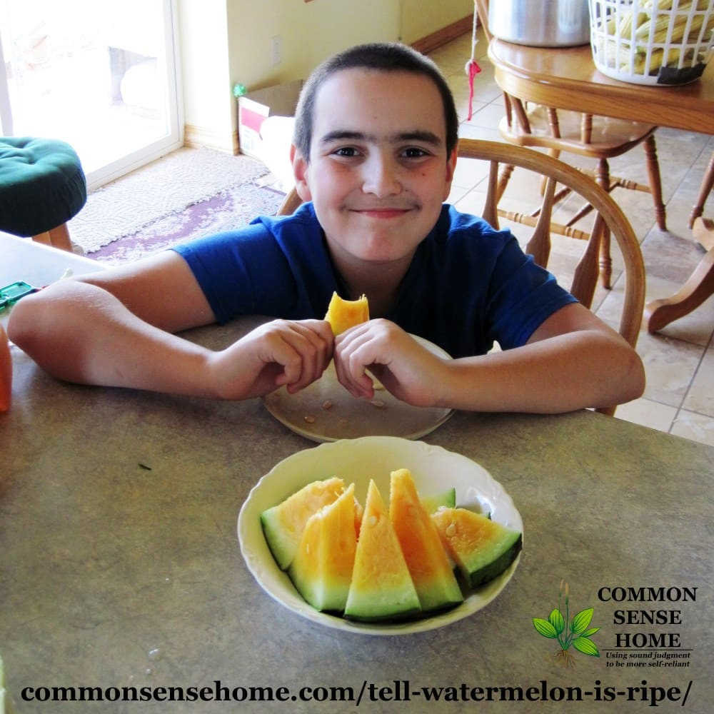 young boy eating ripe yellow watermelon