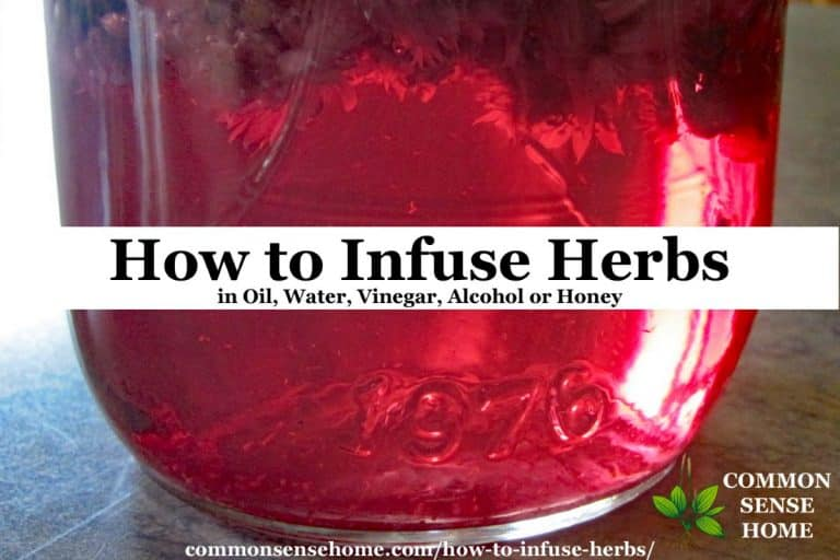 How to Infuse Herbs in Oil, Water, Vinegar, Alcohol or Honey