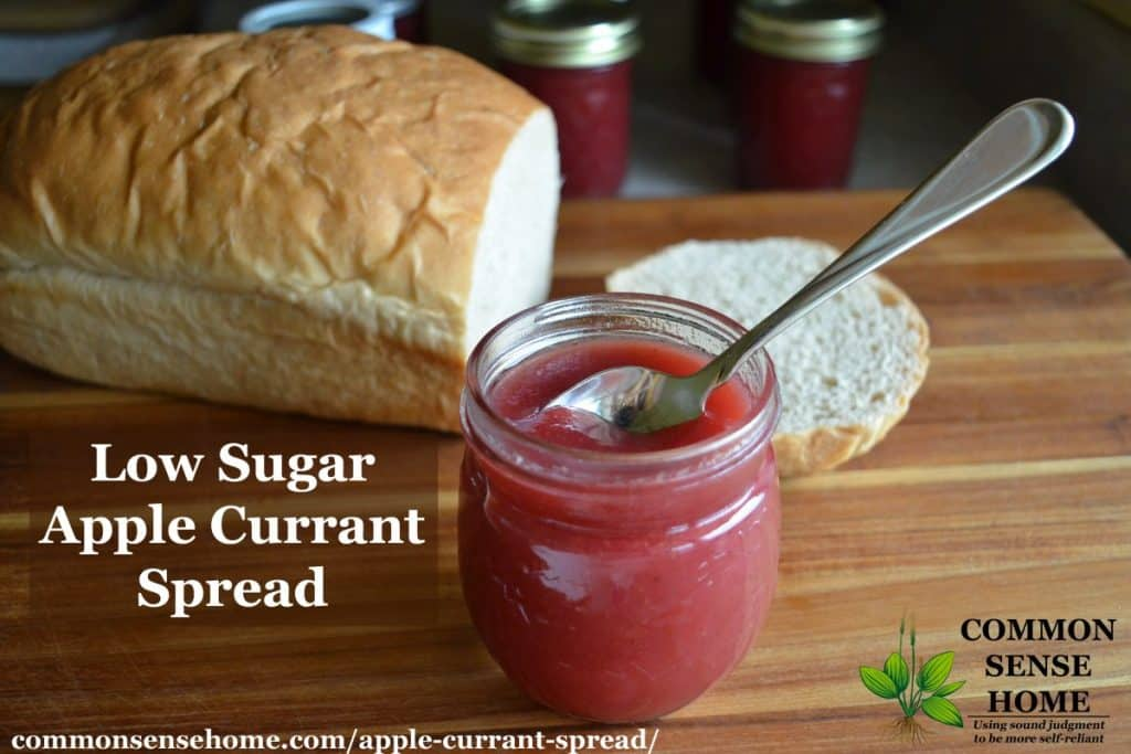 apple currant spread
