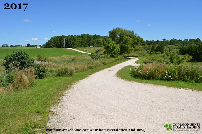 Our Homestead - Then and Now - How Things Have Changed - The Driveway