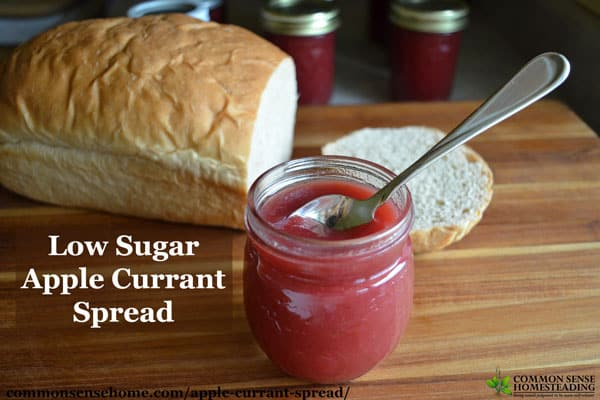 This low sugar apple currant spread with a touch of cinnamon is a less sweet alternative to traditional currant jams and jellies.