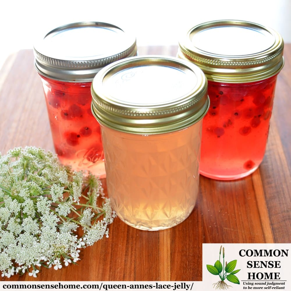 queen anne's lace jelly jars