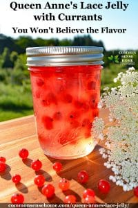 queen anne's lace jelly jar
