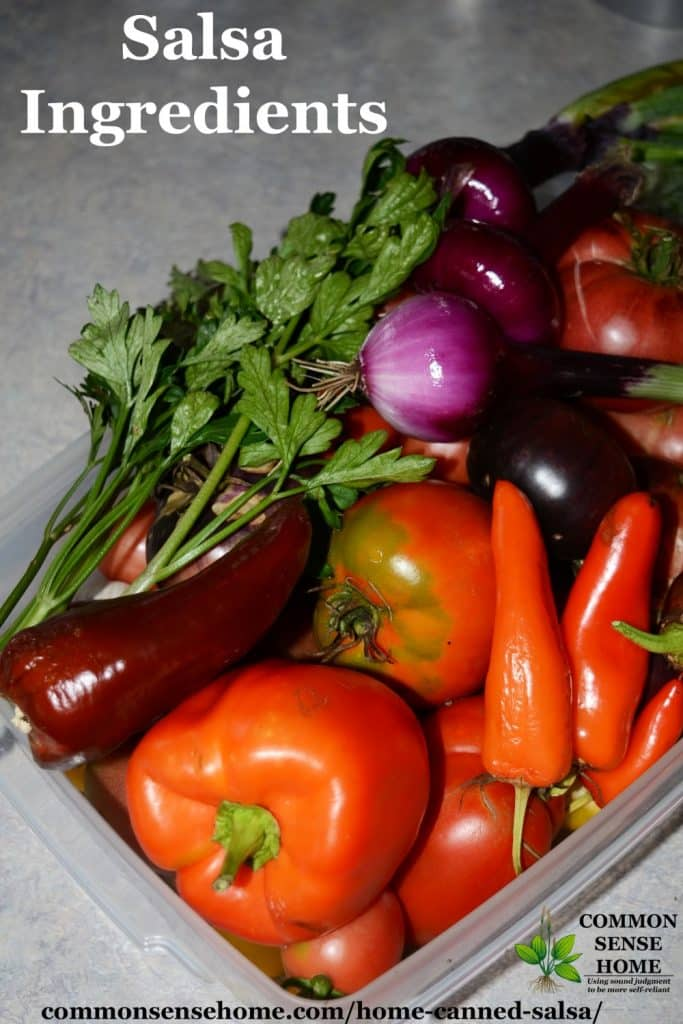 salsa recipe for canning ingredients