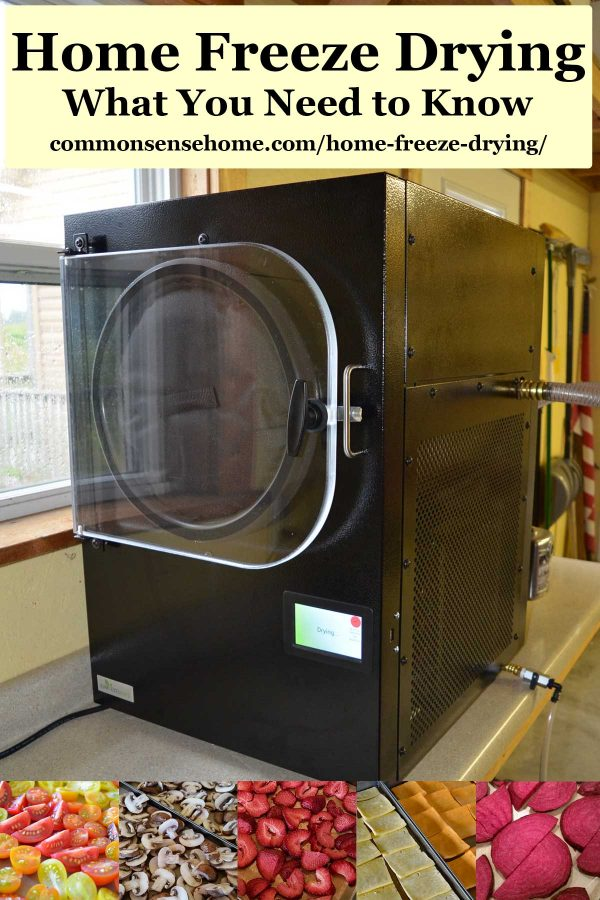 home freeze dryer for food preservation