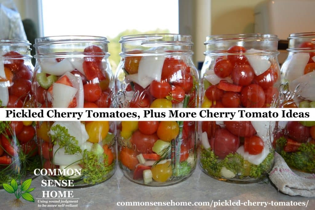 pickled cherry tomatoes row
