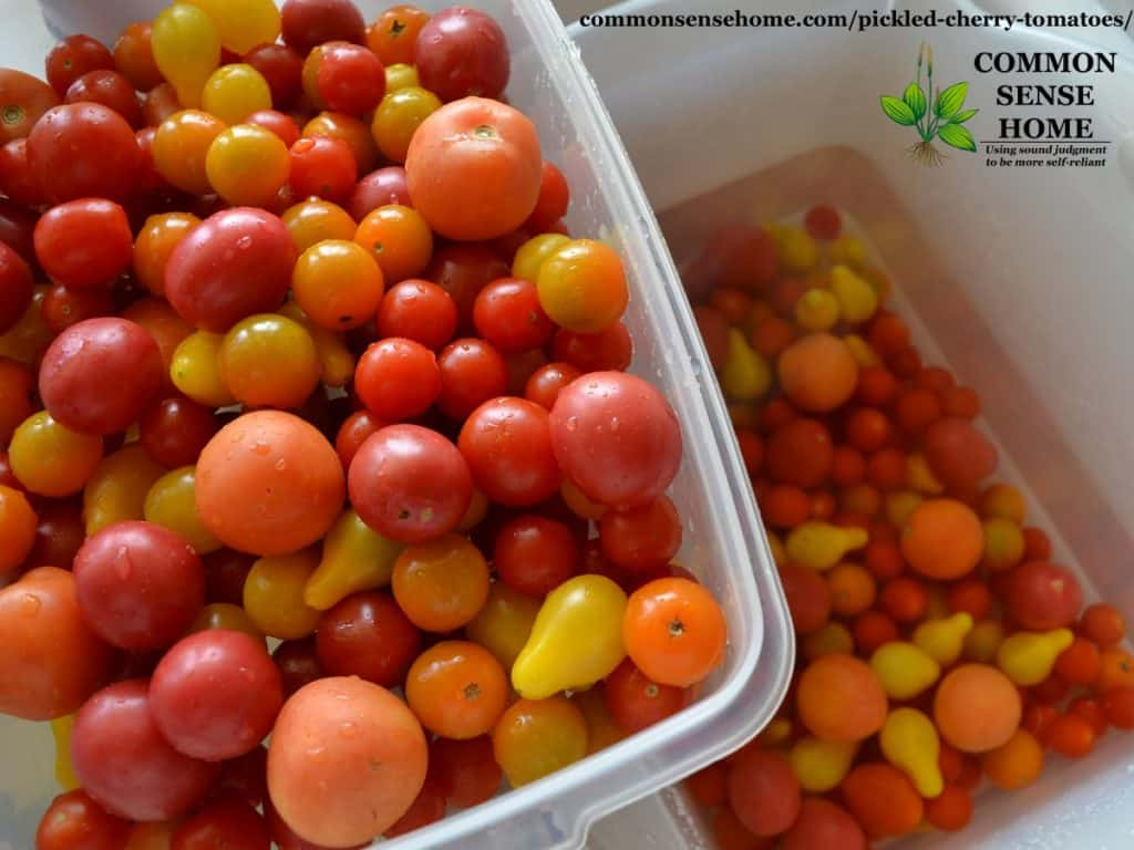 rinsed cherry tomatoes