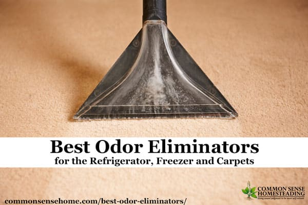 Best Odor Eliminators For The Refrigerator Freezer And