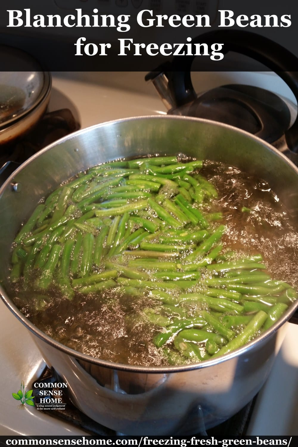 blanching green beans for freezing